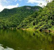 Tours and Services, Belize Tropical Dream Villas