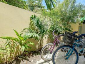 Photos, Belize Tropical Dream Villas